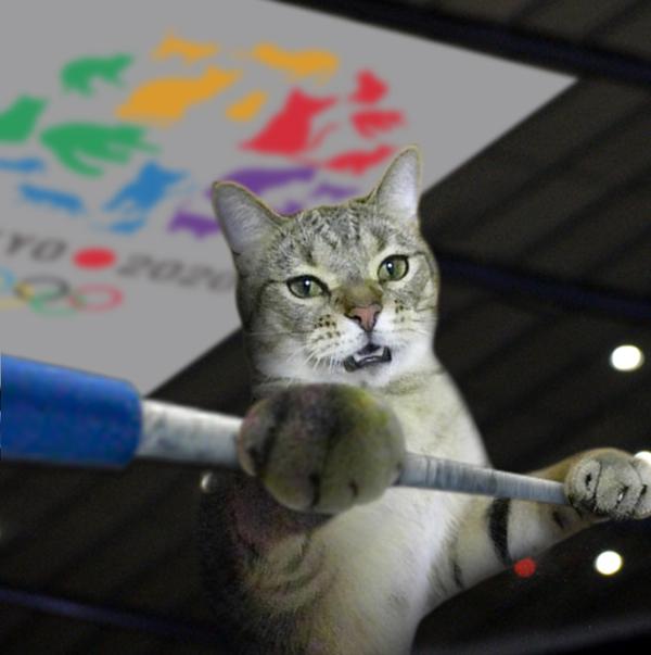 「東京五輪猫」