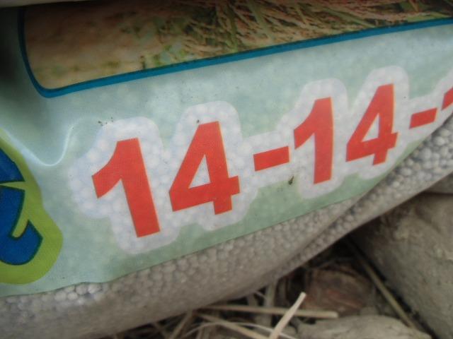 CIMG1911.jpg