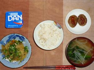 胚芽押麦入りご飯,野菜の煮物,プチバーグ×2,ほうれん草ともやしのおみそ汁,ヨーグルト