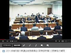 13年6月総務委員会(政策部)