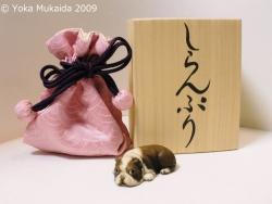 © 陽佳 2009「しらんぷり」DH000166.jpg
