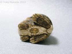 © 陽佳 2010「仔兎」DH000128.jpg