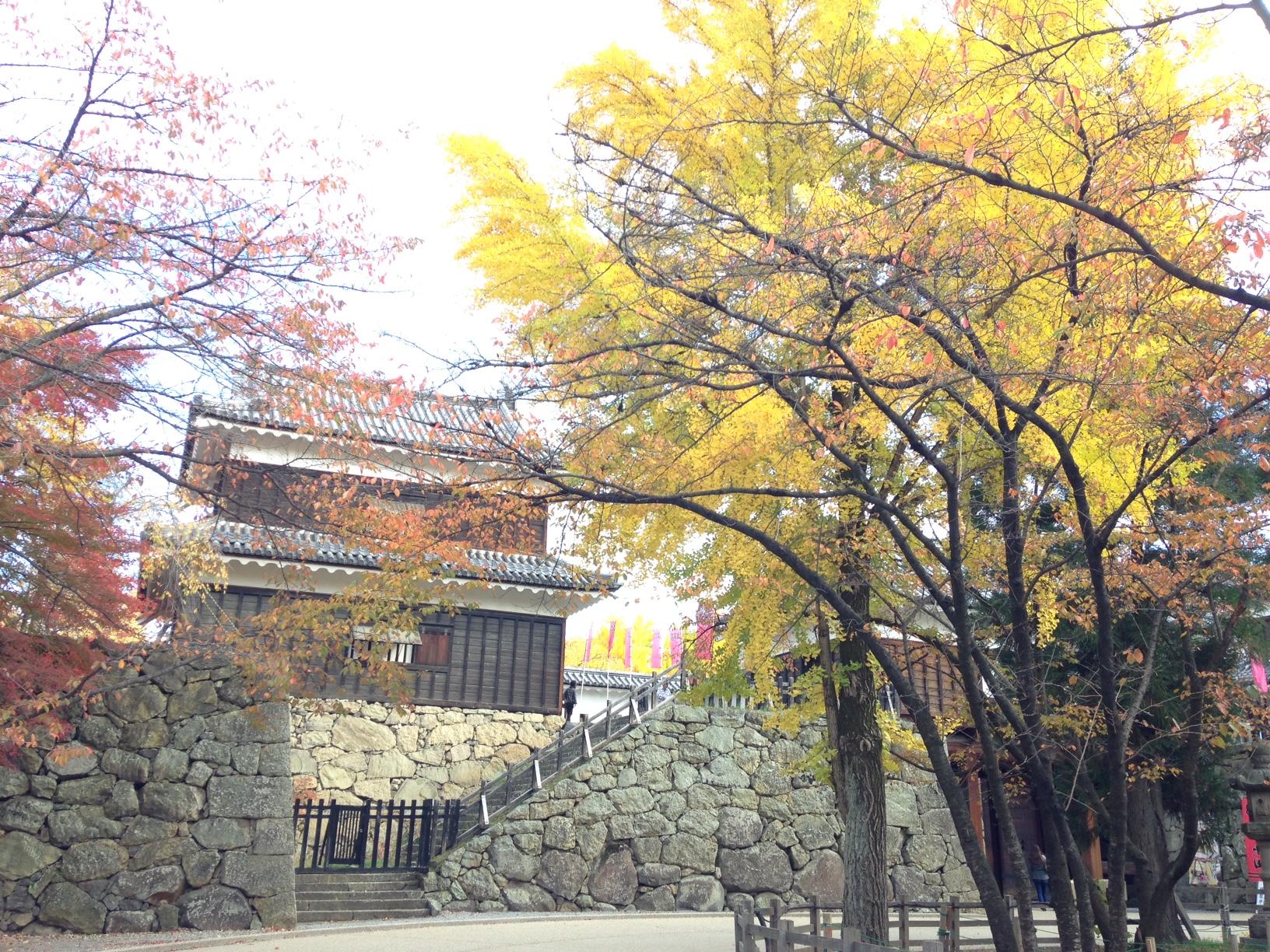 2014上田城紅葉