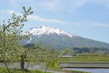 ブログ岩木山3