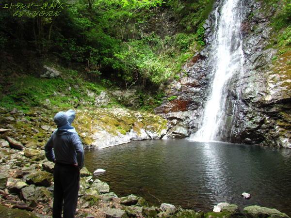 7516竜頭の滝を見上げる130526