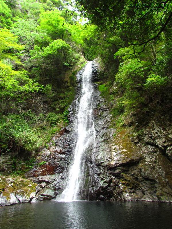 7515竜頭の滝130526