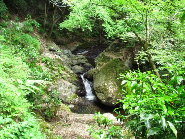 7511小さな滝がいっぱいありました130526