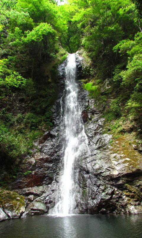 携帯用 7525竜頭の滝480×800