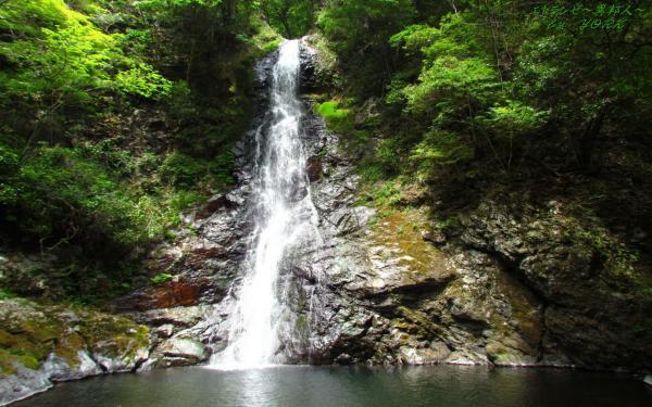 壁紙 7521竜頭の滝1280×800