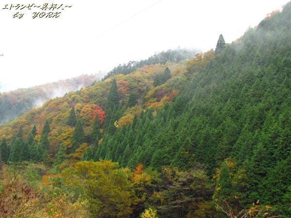 0532黄葉の山131104