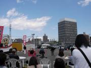 花みずき2013-4