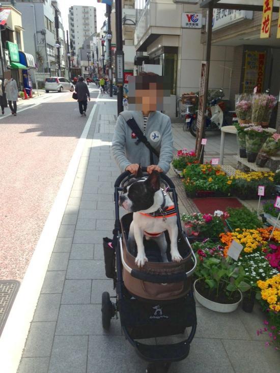 蜀咏悄+(4)_convert_20130414200647