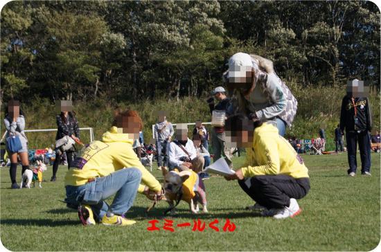 DSC02542_convert_20131016105757.jpg