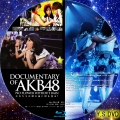 DOCUMENTARY OF AKB48 NO FLOWER WITHOUT RAIN(BD2)