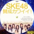 賛成カワイイ!(DVD4)