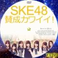 賛成カワイイ!(DVD2)