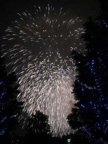 神奈川新聞花火大会2013年