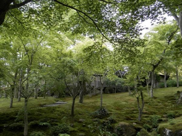 箱根美術館5