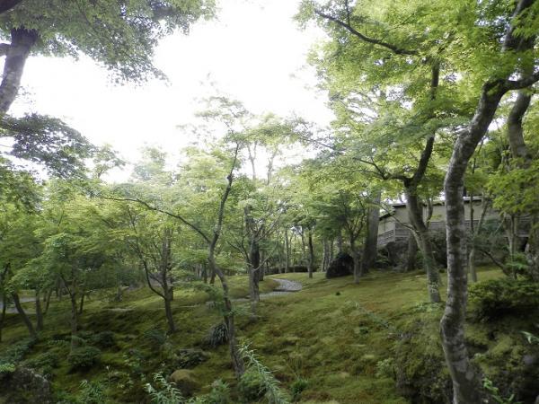 箱根美術館6
