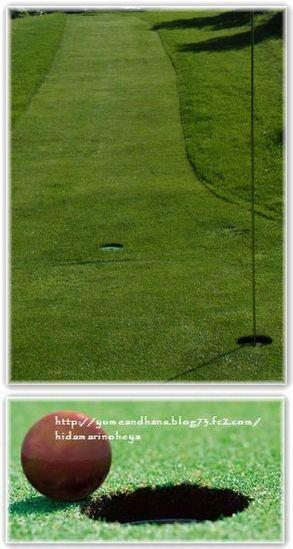 1-2パークゴルフ130529