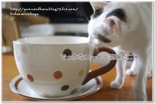 1-1でっかな茶碗ZkwfYALBPohTAVe1370182856_1370182924