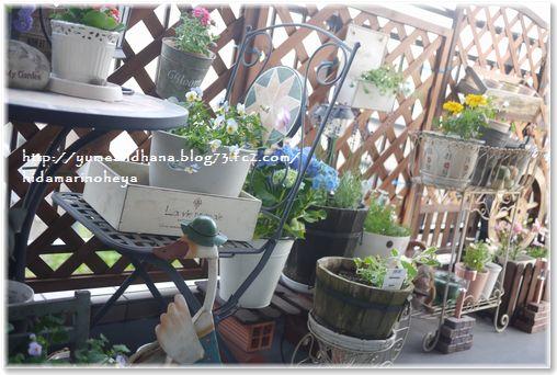 1-1ベランダの花130602