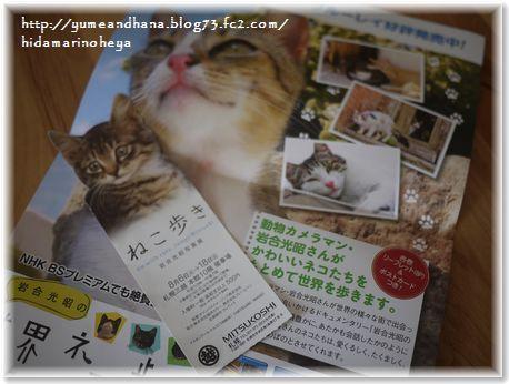 01-ねこ歩き写真展130815