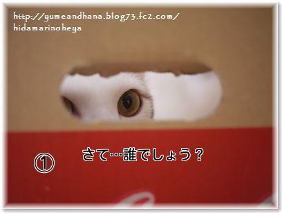 01- ①ココOCM8k6ZmN_xDBfm1380110894_1380111066