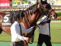 asukakuri001.jpg