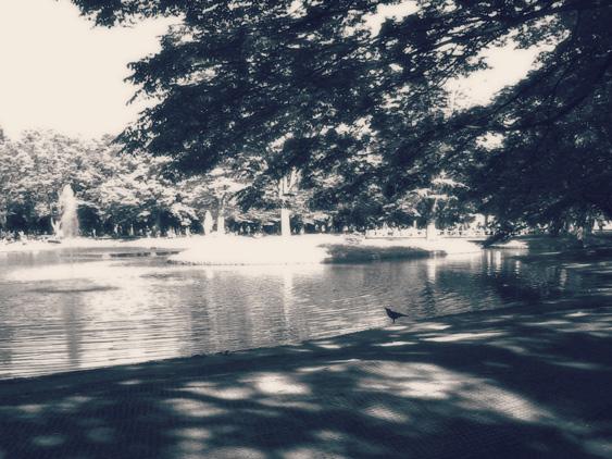yurudeji_代々木公園