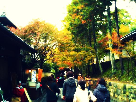 yurudeji_東福寺a