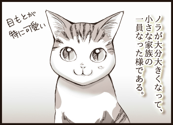 noraya3-01.jpg