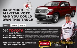 2013allstarvoting_001_2.jpg