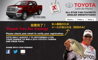 2013allstarvoting_004_2.jpg