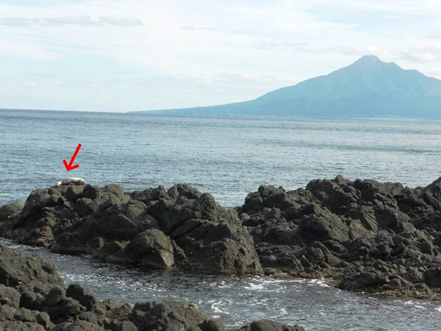 北海道2013・9 ・18~22 (27)