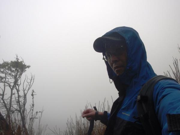 misty2.jpg