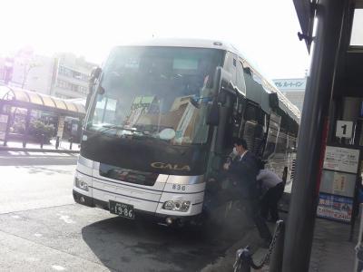 P1060563.jpg