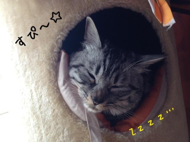 image_20130426222712.jpg