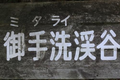 1J6A5531-000000.jpg