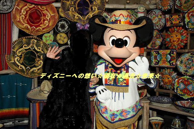 祝☆TDS12周年&ブログ2周年(サルアミのミッキー&ドナルド)