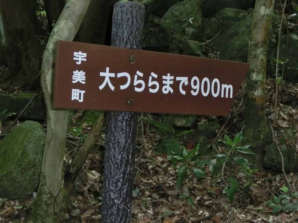 CIMG3288_R.jpg