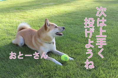 s-runball141118-IMG_3629