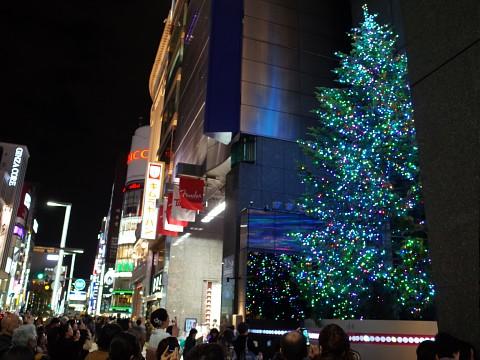 mikimoto2014xmas14.jpg