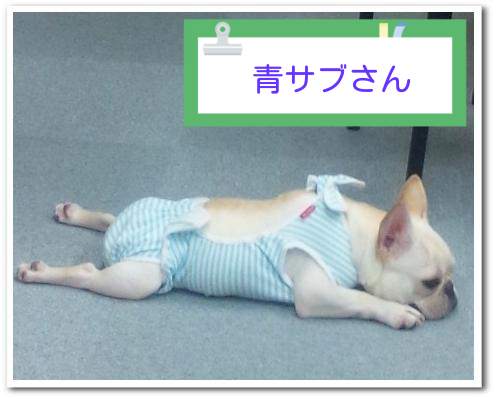 20130919184319302.png
