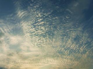 9月22日の空2013_01