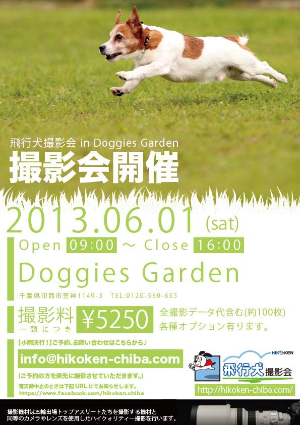 doggies0601.jpg