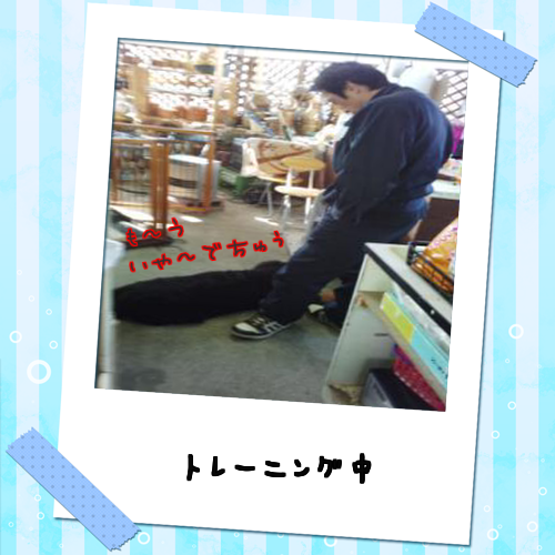 2014020814501190a.png