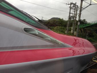 komachi1308.jpg