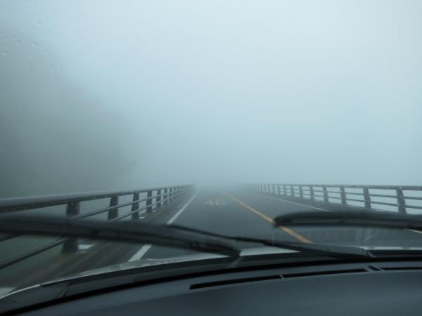 北海道 霧 運転