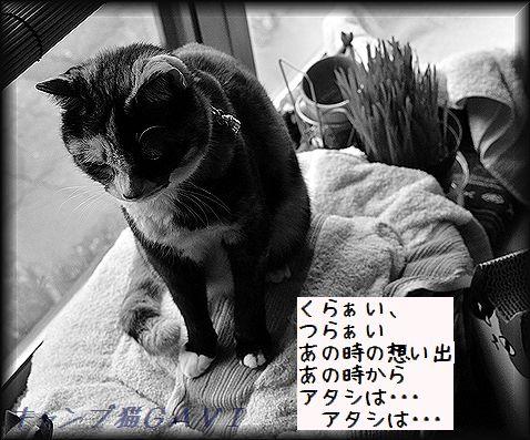 140204_2591.jpg